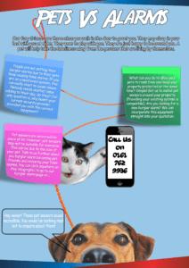 Pet sensor burglar alarms